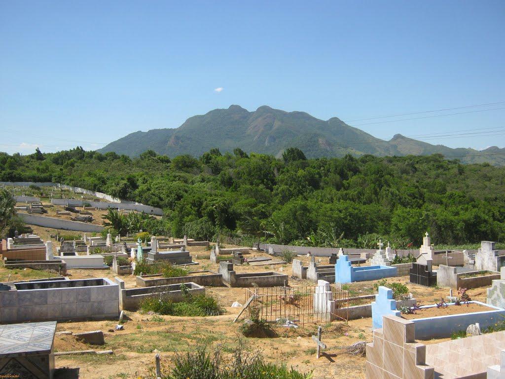 Mulher encontra sepultura vazia e ossada da família desaparece ...