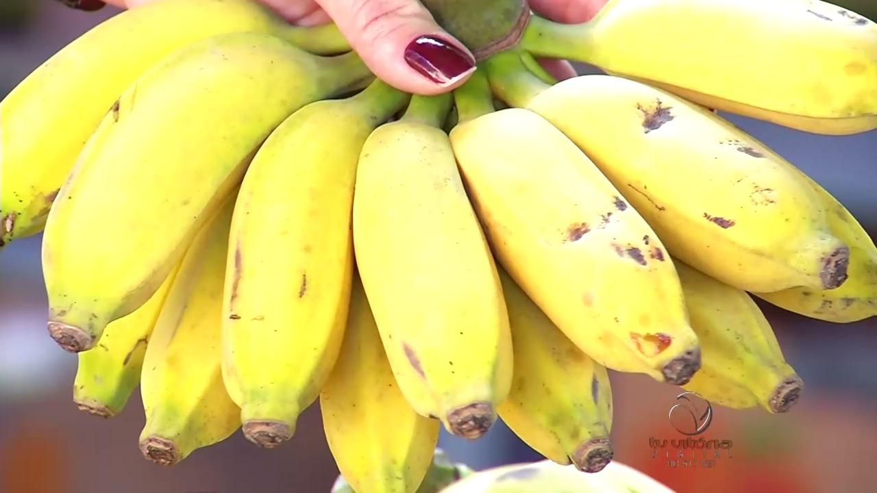 Banana está com preço baixo na feira | Folha Vitória