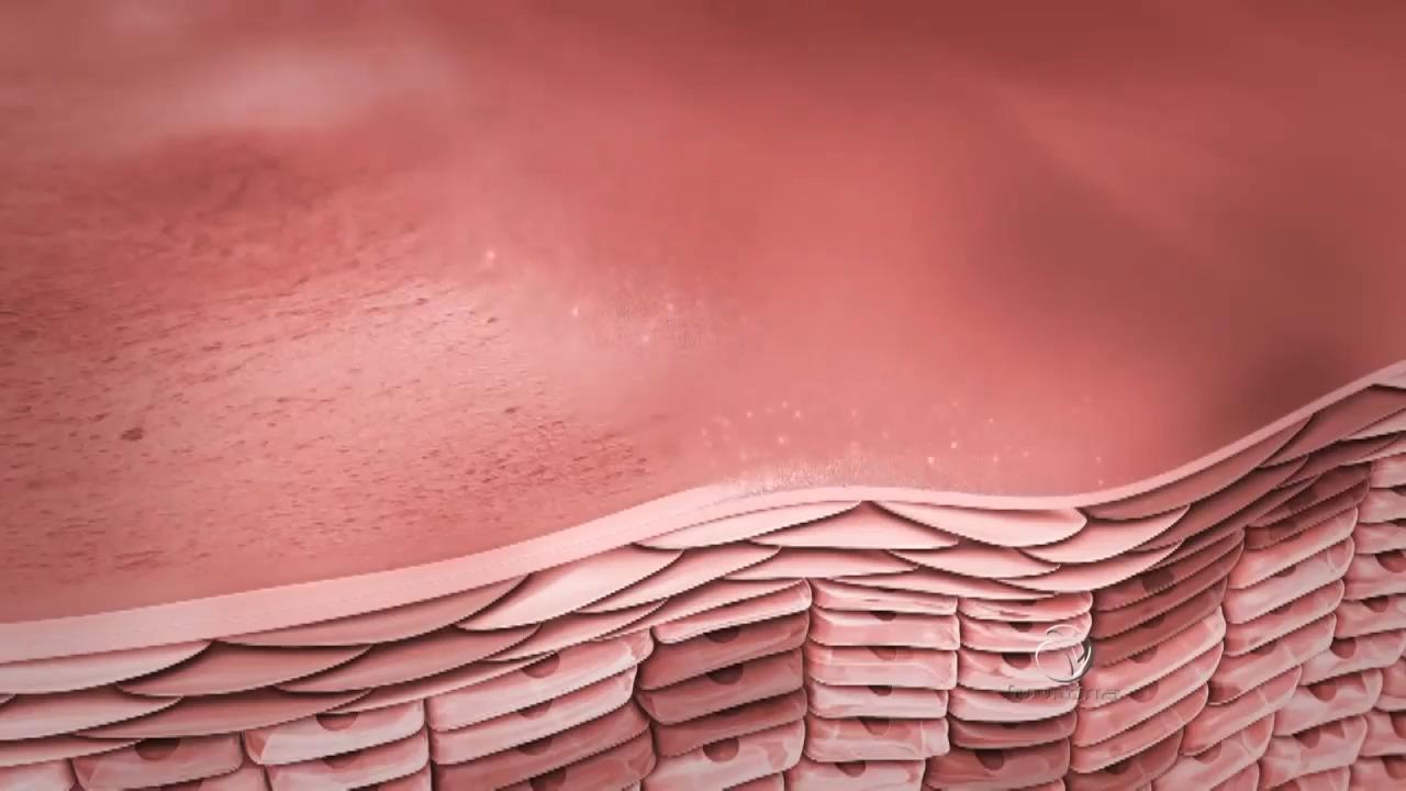 Confira as dicas para tratamentos estéticos de pele | Folha Vitória