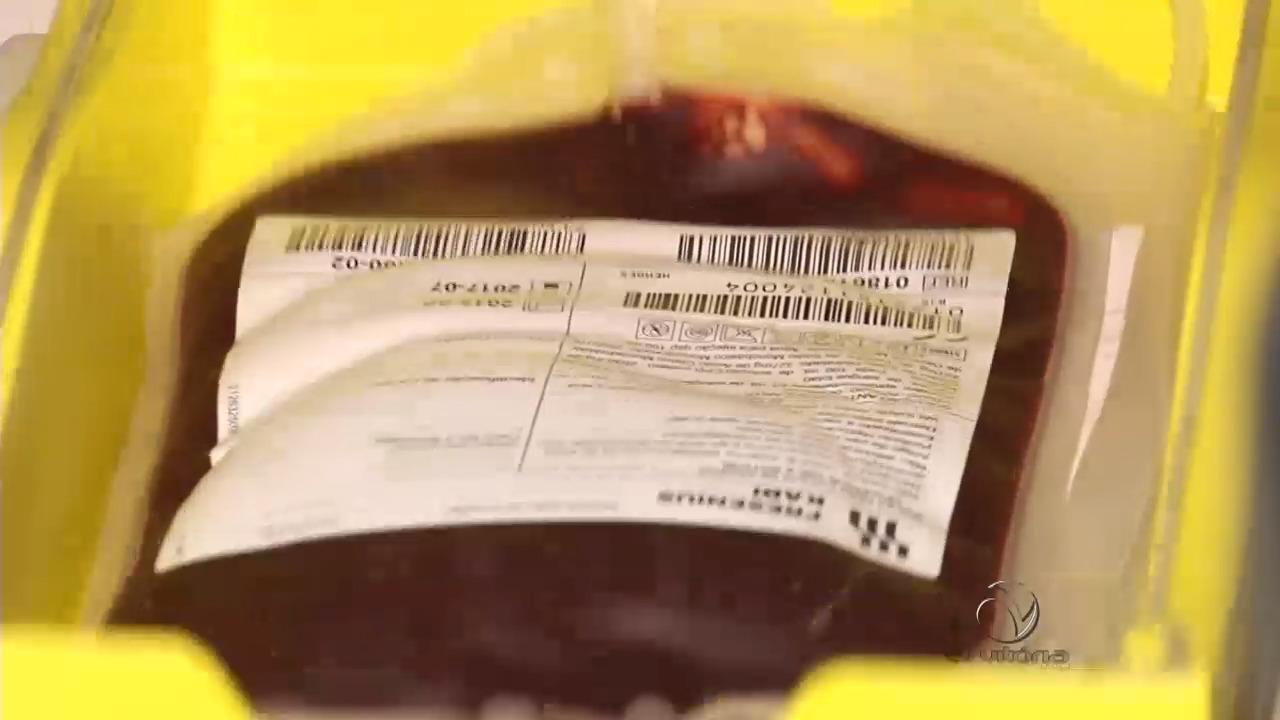 Conheça os cuidados do Hemoes com a doação de sangue | Folha ...