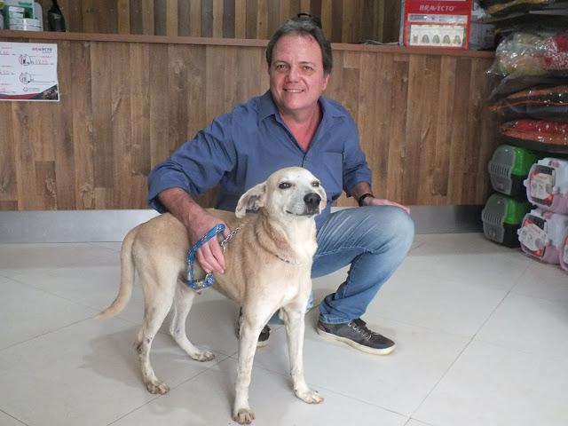 Cachorro espancado por idosa em Cachoeiro ficará com biomédico ...
