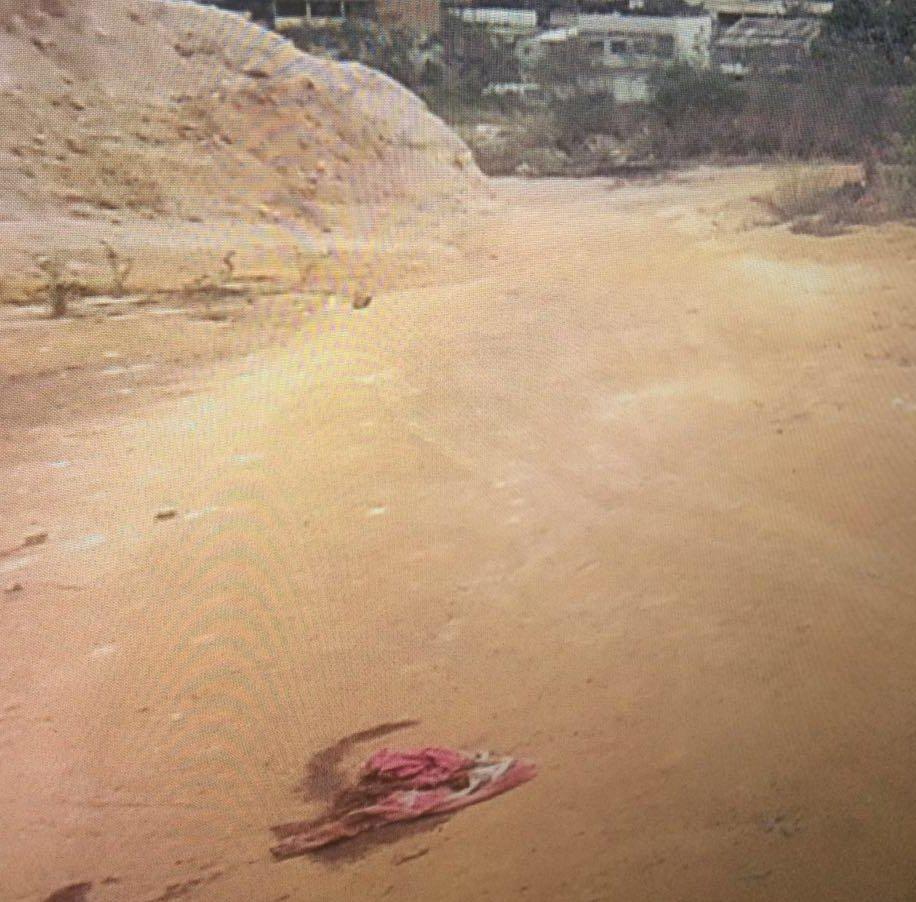 Jovem é morta com 40 facadas e filhos estão desaparecidos em ...